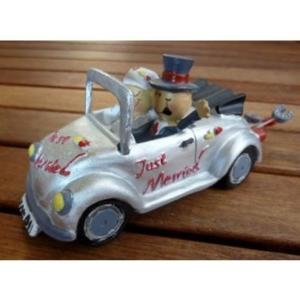 Brautpaar - im Auto
